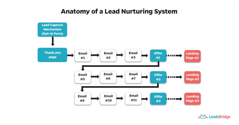 anatomy-lead-nurturing-800x419